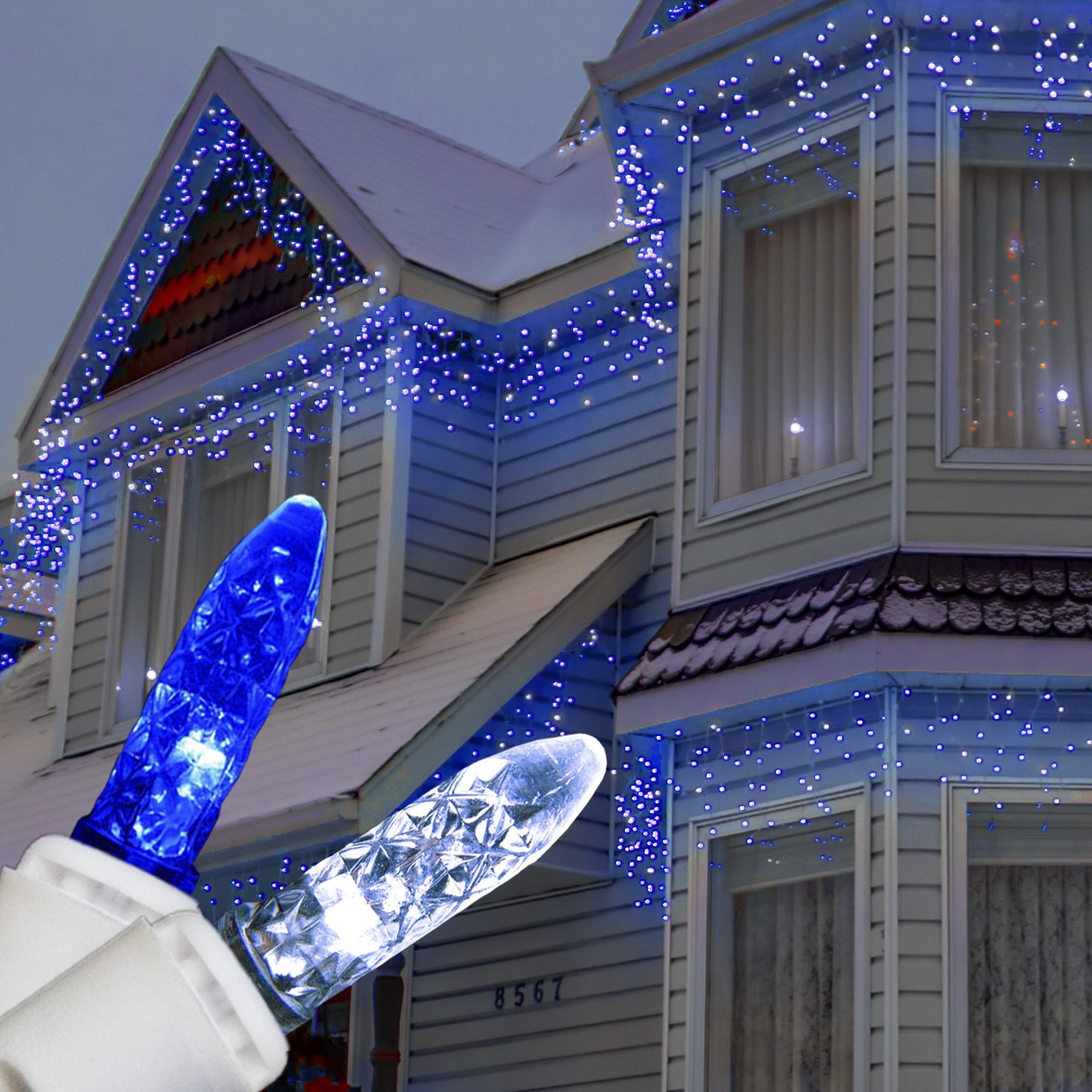 Blue And White Christmas Lights