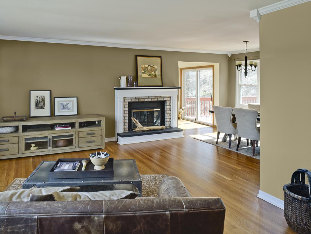 living room colour schemes homesfeed