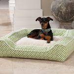 Soft Green Pattern Of Stylish Dog Beds