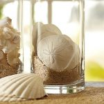 White shells and white sea sands as creative and unique vase fillers