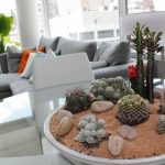 Amazing Indoor Plant Landscape Design With White Sand And Shrub And Cactus And Gray Seating And Glass Window And Orange Pillows