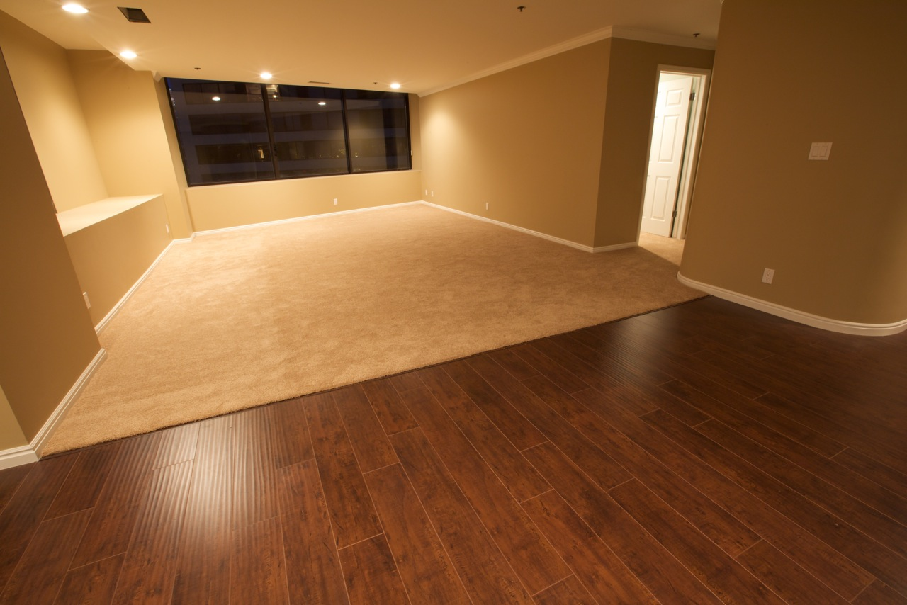 Half Wood Half Carpet Living Room