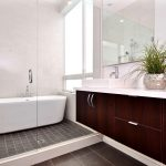 Luxurious Modern Bath Design With Marroon Cabinet And White Top And Walk In Shower And White Bathtub And Small Tile Flooring