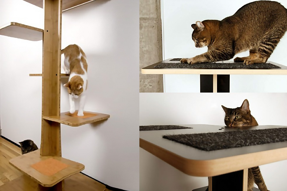 Modern Cat Tree Or Contemporary Furniture Made Of Wood With Stairs