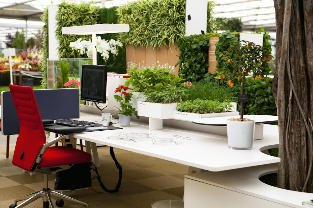 Natural Green Office Ideas - HomesFeed