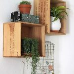 Wall mounted shelves for interior garden which are made of unused wine crates