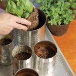 Kitchen Countertop Herb Garden