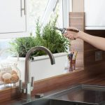 Kitchen Herb GArden Cutting Plant Near Window And Sink