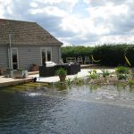 Large Natural Swimming Pool WIth Plants Near Home