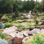 Large Rocks For Landscaping For Stair With Plants