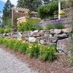 Lava Large Rocks For Landscaping With Yellow Flowers