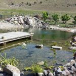 Natural Swimming Pool With Rocks