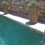 Simple Natural Pool With Two Big Pots