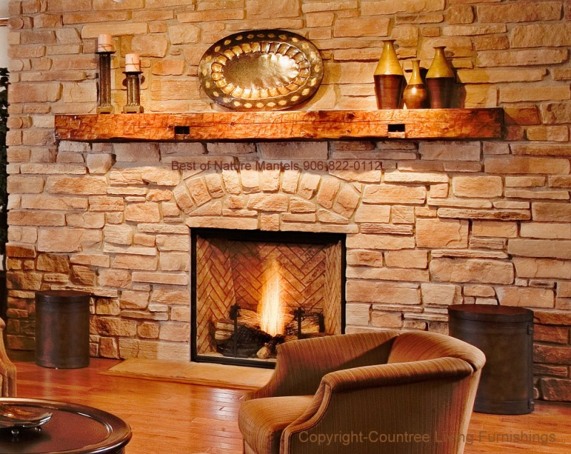 Adorable Fireplace with Glass Panel Concept on Fire Circulation also Rustic Model of Fire Shelf and Adorable Main Lights on Room with Longue Sofa