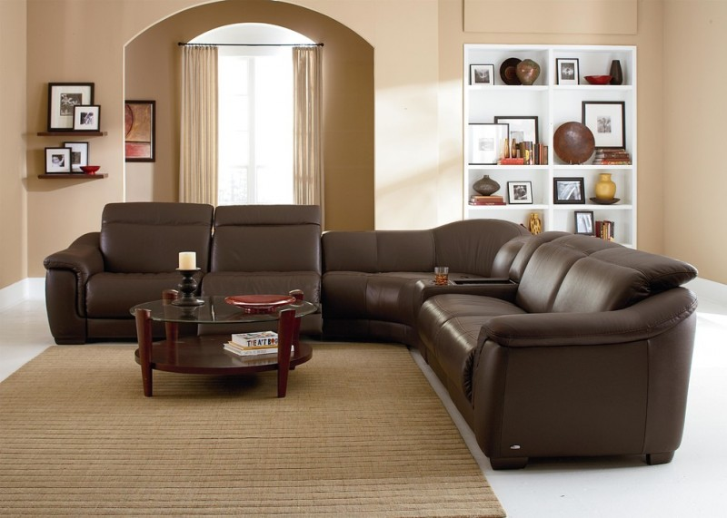 contemporary sleeper sofa with leather finishing glass top coffee table with dark toned wood construction brown area rug beige walls