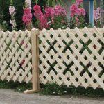 Decorative Wood Fences For Garden