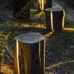 Creative & Innovative Tree Trunk Seats With Light Inside