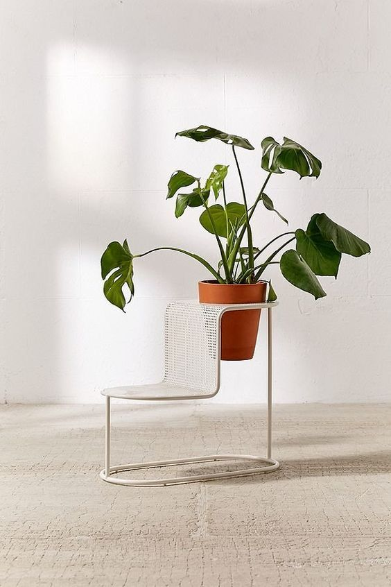 wire made modern plant stand within chair