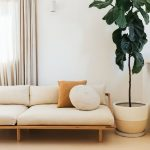 Warming Minimalist Living Room With Soft Neutral Tone Light Wood Bench Seat With Cozy Upholstery Textured Area Rug With Mustard Accents