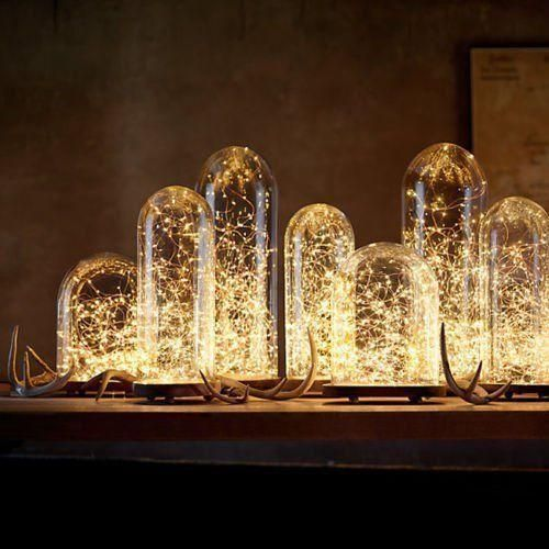 creative terrarium lamps with fireflies inside