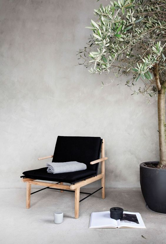 Nordic style seating area light tone wood frame supported with black cushions ornate black planter with houseplant concrete walls and floors