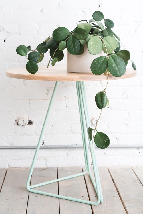 minimalist plant on porcelain pot modern minimalist side table with wood top and triangle shaped wire legs