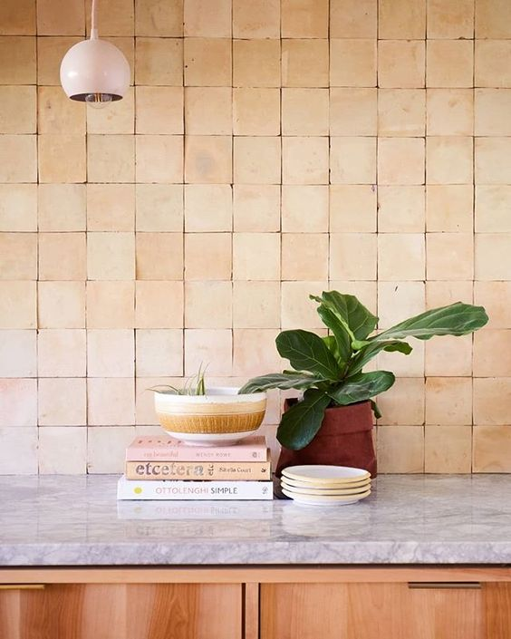 terra cotta tile without grout burnt clay pot with plant a pile of book