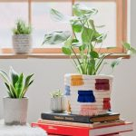DIY Planter Made Of Rolled Rope With Colorful Tassel Accents