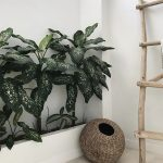 Greenery In Concrete Planter Ornate Woven Basket Wooden Leaning Ladder
