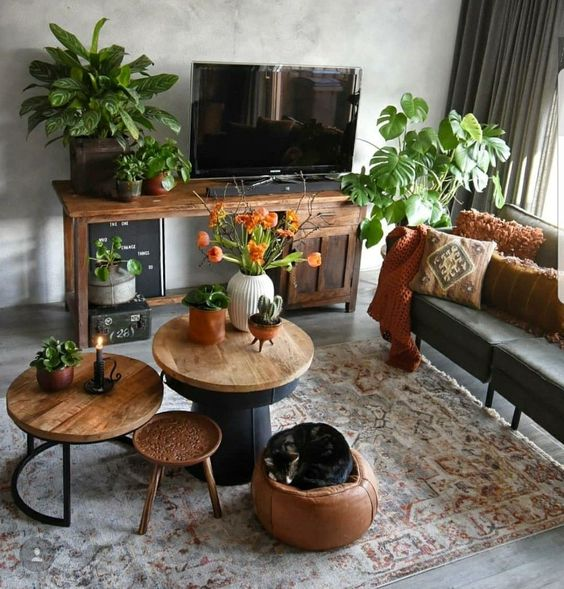 potted house plants dark wood TV console vintage area rug round top coffee tables in different size earthy brown pouf