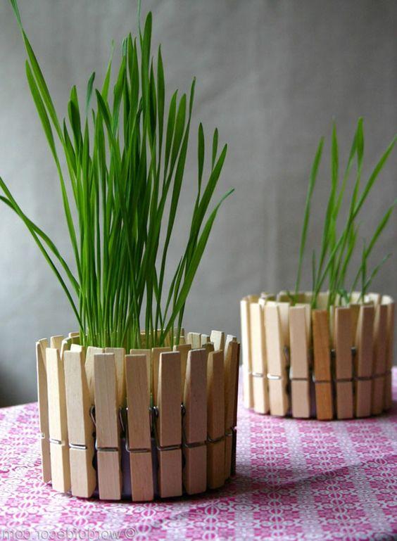wood cloth clip planters