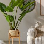 Woven Planter With Light Wood Stand Huge Houseplants Velvet Modern Sofa In Broken White With Stripe Texture