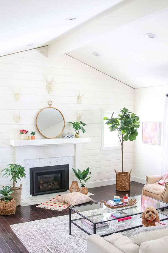 wood plank walls in white houseplants with woven planters recessed fireplace glass coffee table with black frame light toned area rug white sofa