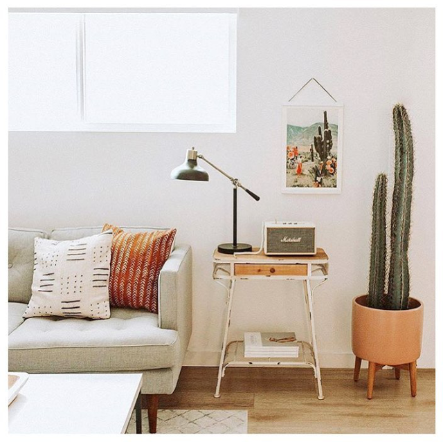 bright and airy living room with ultra light gray sofa multicolored accent pillows wood top bedside table with worn out metal frame cactus on stylish planter